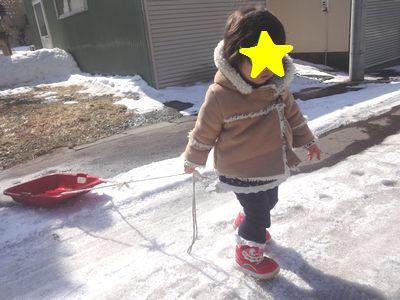 残り少ない雪でソリ遊び