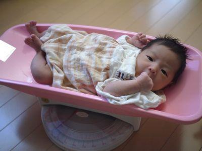 新生児の体重を測るスケール